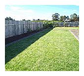 lawn3_small.jpg - 29.57 kB